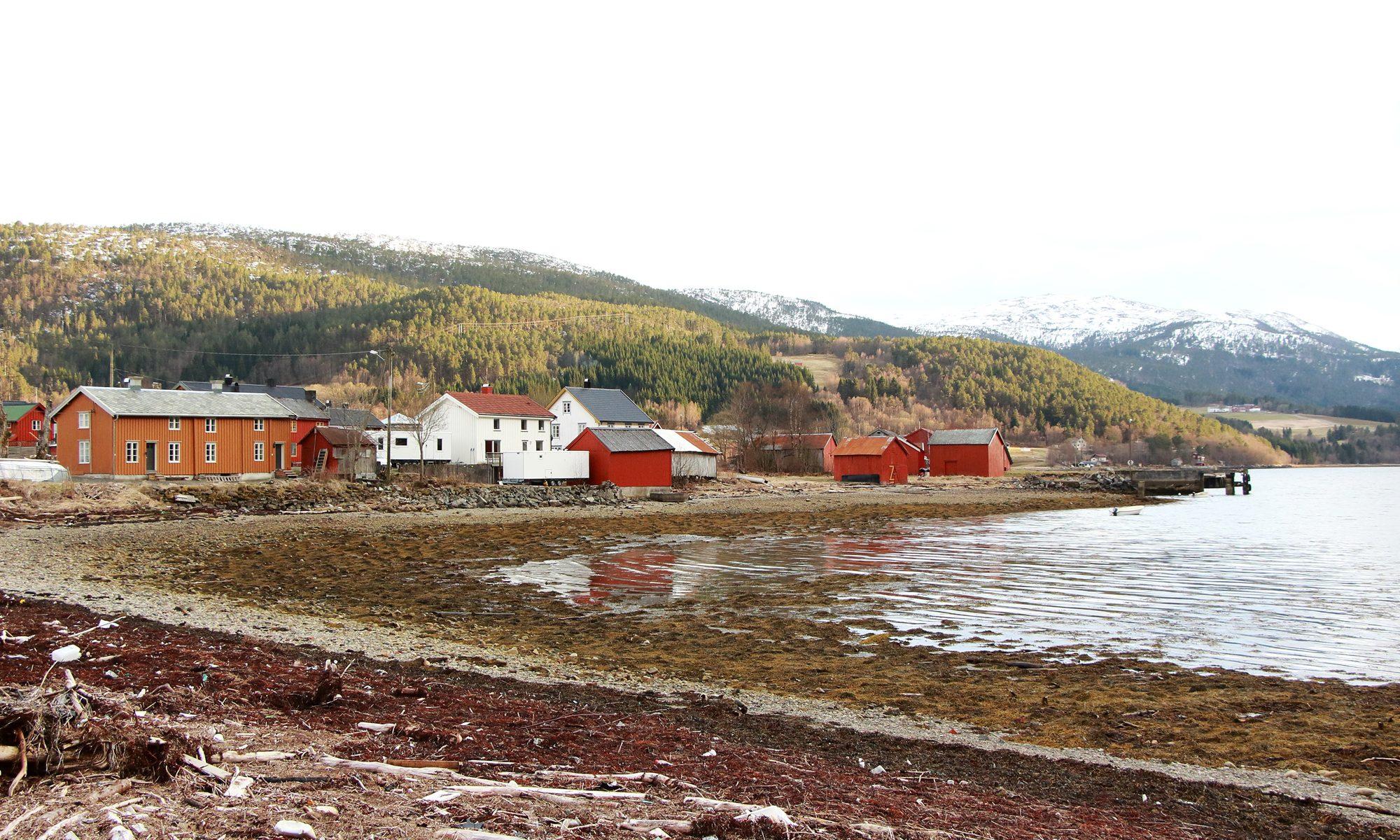 Fjordkulturdagan på Vinjeøra